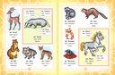 Немецко-русский визуальный словарь для детей — фото, картинка — 4