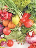 Большая книга садовода и огородника — фото, картинка — 12