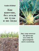 Большая книга садовода и огородника — фото, картинка — 13