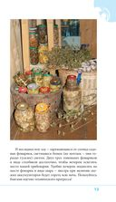Грибы. Иллюстрированный справочник-определитель — фото, картинка — 13