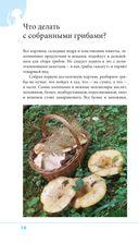 Грибы. Иллюстрированный справочник-определитель — фото, картинка — 14