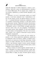 Послание сокола — фото, картинка — 6
