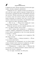 Послание сокола — фото, картинка — 8