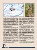 Большая энциклопедия охоты — фото, картинка — 11