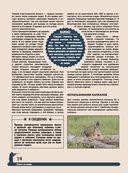 Большая энциклопедия охоты — фото, картинка — 13