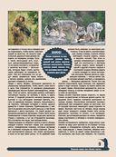 Большая энциклопедия охоты — фото, картинка — 8