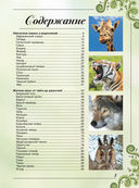 Большая книга о животных. 1001 фотография — фото, картинка — 2