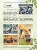 Большая книга о животных. 1001 фотография — фото, картинка — 14