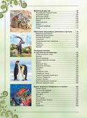 Большая книга о животных. 1001 фотография — фото, картинка — 3