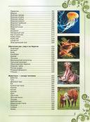 Большая книга о животных. 1001 фотография — фото, картинка — 4