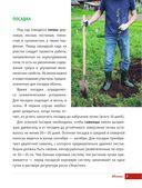 Яблони и груши. Секреты урожая от Октябрины Ганичкиной — фото, картинка — 6