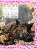Детская энциклопедия животных — фото, картинка — 13