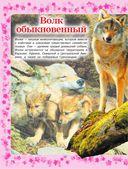 Детская энциклопедия животных — фото, картинка — 14