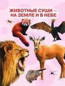 Детская энциклопедия животных — фото, картинка — 4