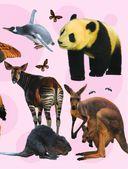 Детская энциклопедия животных — фото, картинка — 5
