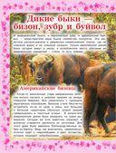 Детская энциклопедия животных — фото, картинка — 6