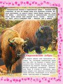 Детская энциклопедия животных — фото, картинка — 7