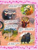Детская энциклопедия животных — фото, картинка — 9