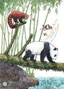 Я большая панда — фото, картинка — 2