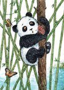 Я большая панда — фото, картинка — 4