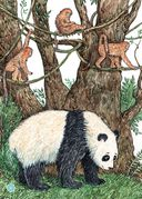 Я большая панда — фото, картинка — 6