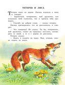 Лев Толстой. Рассказы и сказки для детей — фото, картинка — 8