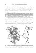 Современные полимерные материалы — фото, картинка — 10