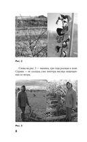 Моя урожайная теплица — фото, картинка — 8