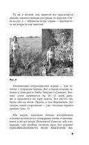 Моя урожайная теплица — фото, картинка — 9