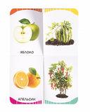Фрукты, овощи, ягоды — фото, картинка — 2