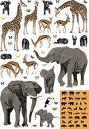Моя книга животных — фото, картинка — 5