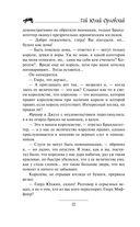 Юджин - повелитель времени. Книга 6. Небоскребы магов — фото, картинка — 12