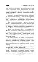 Юджин - повелитель времени. Книга 6. Небоскребы магов — фото, картинка — 8