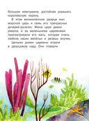 Русалочка — фото, картинка — 7