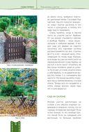 Дача мечты от Галины Кизимы. Самоучитель для начинающих садоводов и огородников — фото, картинка — 14