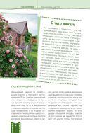 Дача мечты от Галины Кизимы. Самоучитель для начинающих садоводов и огородников — фото, картинка — 8