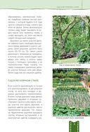 Дача мечты от Галины Кизимы. Самоучитель для начинающих садоводов и огородников — фото, картинка — 9