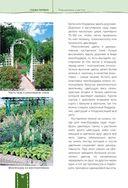 Дача мечты от Галины Кизимы. Самоучитель для начинающих садоводов и огородников — фото, картинка — 10