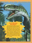 Расскажи мне всё о динозаврах — фото, картинка — 9