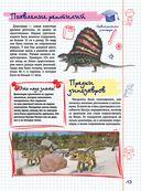 Все, что должны знать образованные мальчики и девочки о динозаврах — фото, картинка — 12