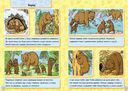 Животные леса — фото, картинка — 1