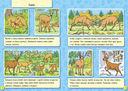 Животные леса — фото, картинка — 2