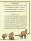 Как все устроено сегодня. Иллюстрированная энциклопедия устройств и механизмов — фото, картинка — 4