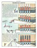 Как все устроено сегодня. Иллюстрированная энциклопедия устройств и механизмов — фото, картинка — 7