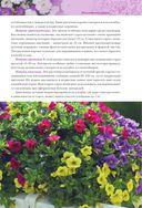 Петунии. От рассады до цветника — фото, картинка — 4