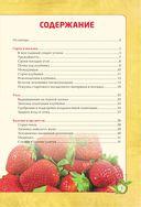 Клубника без ошибок и без химии от Павла Траннуа — фото, картинка — 1