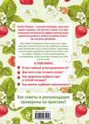 Клубника без ошибок и без химии от Павла Траннуа — фото, картинка — 4