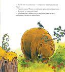Осенняя сказка про Медведицу — фото, картинка — 3