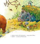 Осенняя сказка про Медведицу — фото, картинка — 5
