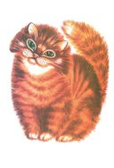 Как мыши с котом воевали — фото, картинка — 6